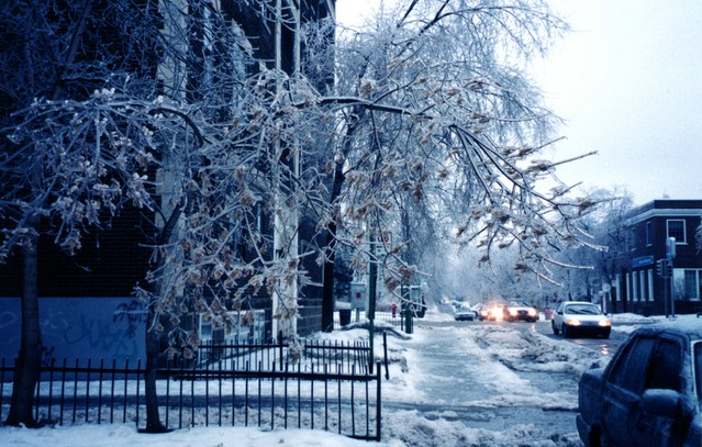 Trip & Fall Accident Cases Caused By Ice & Snow: Who Is At Fault?